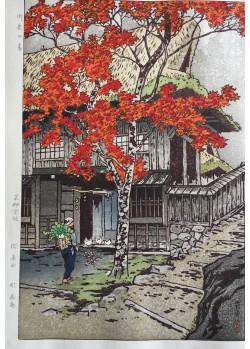 Maison à Ontake